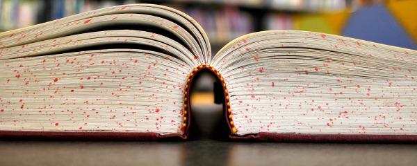 book-92771_1920-600x240